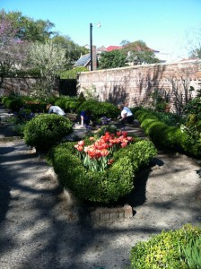 Garden club members work in the Heyward-Washington Garden